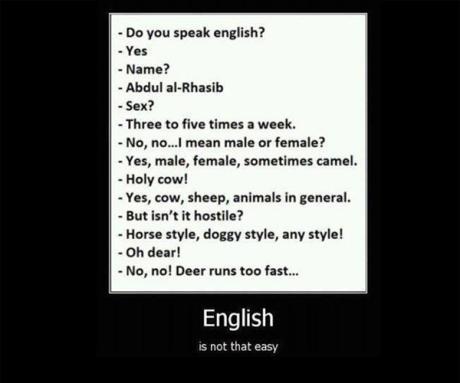Về nỗi cực hình mang tên ngoại ngữ