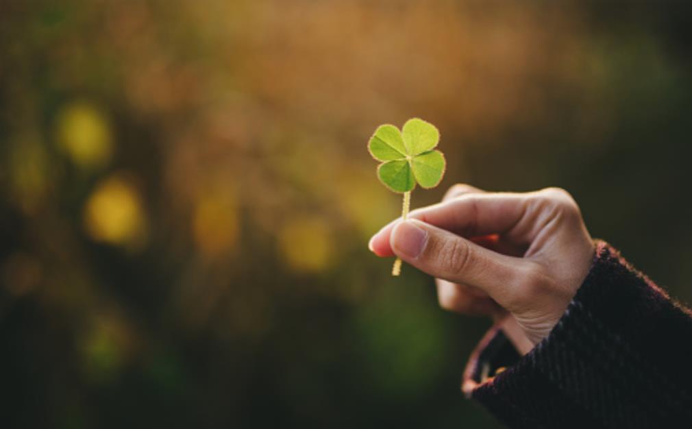 Nếu Thấy Mình Có 5 Dấu Hiệu Này Thì đừng Lo May Mắn đang ở Rất