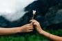 Làm thế nào để tha thứ cho người làm tổn thương bạn?