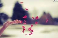 5 điều đơn giản giúp bạn nắm lấy hạnh phúc