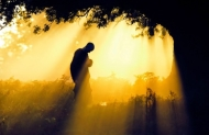 Muốn hạnh phúc: Sống nên thuật tùy duyên, không cưỡng cầu