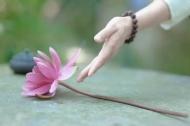 Nắm những điều Phật dạy sau bạn sẽ phá giải được mọi khó khăn