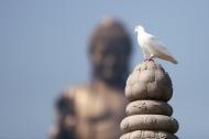 4 câu nói đầy trí tuệ của Phật gia, đọc xong hiểu cả cuộc đời