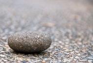 Giá trị của một hòn đá