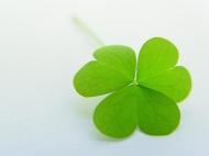 10 cách bắt lấy may mắn