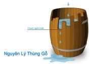 Nguyên lý thùng gỗ là gì và áp dụng như thế nào?