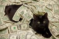 24 câu nói cực hay về tiền khiến chúng ta phải suy ngẫm