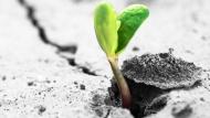 3 câu nói giúp xem nhẹ những việc không như ý trên đời