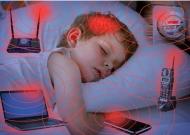 100 nhà khoa học khẩn cầu LHQ cảnh báo về tác hại của điện thoại di động